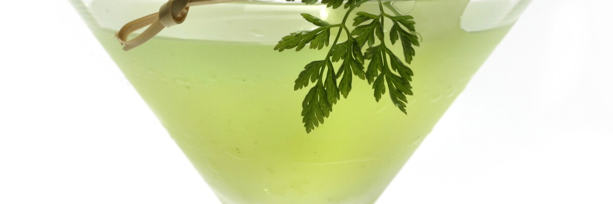 A martini with chervil and cucumber