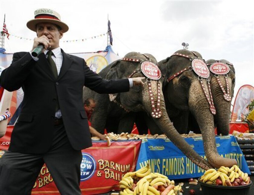 George Shea, left, of Major League Eating presents the first-ever Elephants & Humans six-minute hot dog bun eating competition held with Nathan's Famous in Coney Island in Brooklyn, N.Y., Friday, July 3, 2009. The competition features three Ringling Bros. Asian elephants, from left to right, Susie, 46, Minnie, 48 and Bunny, 42, and three Major League Eaters. The human eaters will compete the next day in the Nathan's Famous Fourth of July International Hot Dog-Eating Contest. (AP Photo/Yanina Manolova)