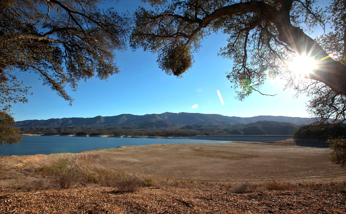 Cachuma Lake's previous shoreline is brown and dry as the water level continues to drop because of sustained drought conditions.