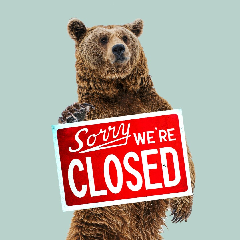 """A bear stands behind a sign that says """"Sorry we're closed."""""""