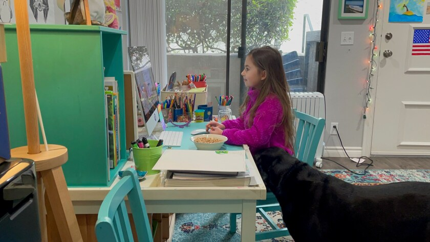 Sierra Spydell, a second-grader at  Torrey Pines Elementary in San Diego, does distance learning at home next to her dog