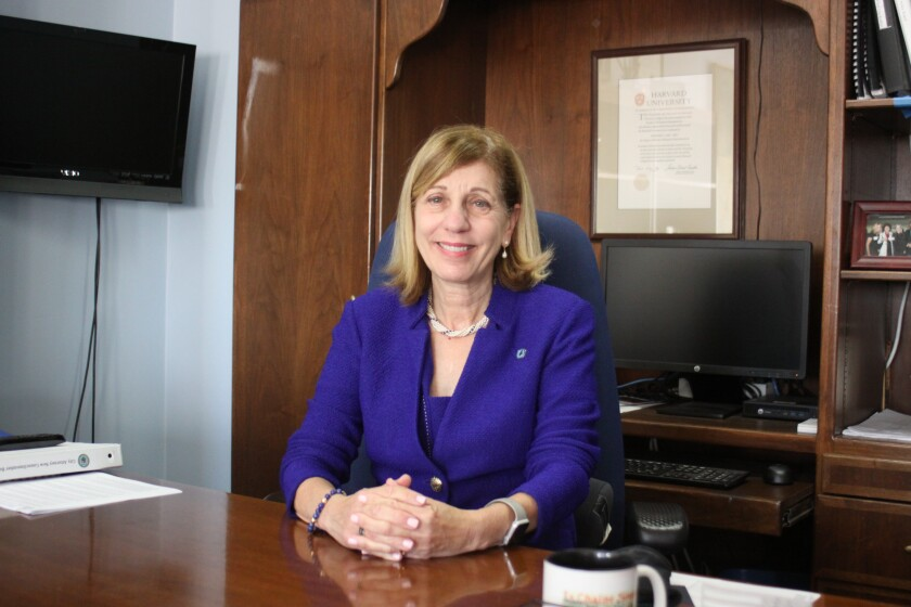 "San Diego City Council President Pro Tem Barbara Bry says she's thinking about ""how we are going restructure city government in the 'new San Diego.'"""