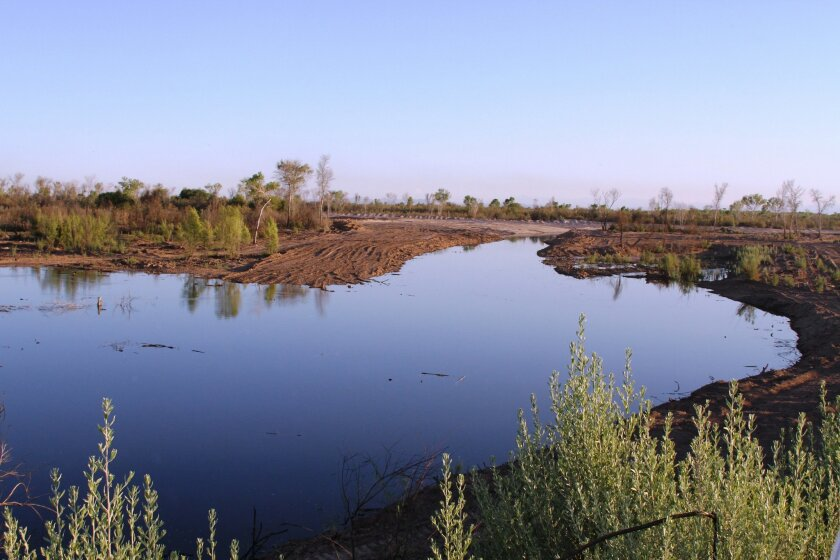 Flows from the Colorado River reached the Laguna Grande restoration area in Baja California this week.