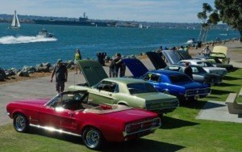 Mustangs by the Bay