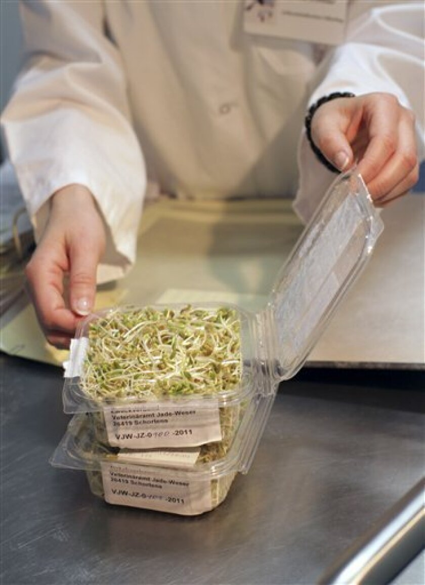 """An employee of the consumer protection authority of Lower Saxony examines a sample of sprouts from a farm in the Uelzen area in Oldenburg, northern Germany, Monday, June 6, 2011. In a surprising U-turn, German officials said the initial tests provided no evidence that sprouts from an organic farm in northern Germany were the cause of the country's deadly E. coli outbreak. The Lower-Saxony state agriculture ministry said 23 of 40 samples from the sprout farm suspected of being behind the outbreak have tested negative for the highly aggressive, """"super-toxic"""" strain of E. coli bacteria. It said tests were still under way on the other 17 sprout samples. (AP Photo/dapd, Markus Hibbeler)"""