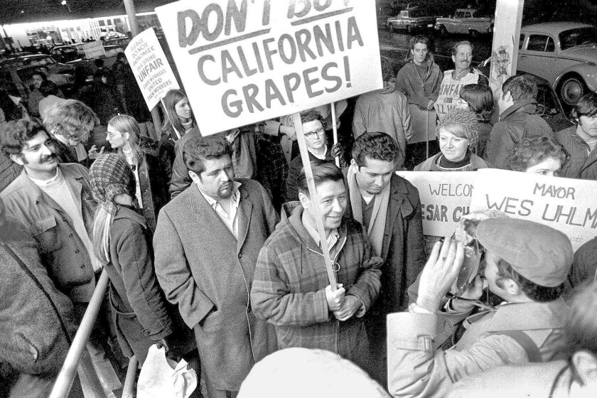 United Farm Workers leader Cesar Chavez, carrying a sign calling for a boycott of table grapes, leads about 400 people in picketing at a Safeway supermarket in Seattle on Dec. 19, 1969.