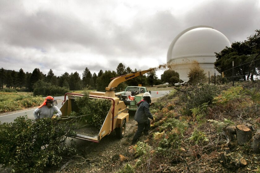 Tree trimmers load brush into a wood chipper along the road leading to the Palomar Observatory.