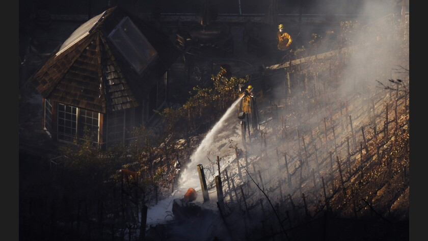 Firefighters douse a hot spot next to a vineyard charred by the Skirball fire in Bel-Air.