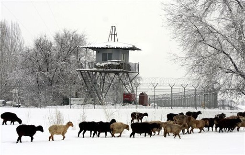 A flock of sheep walk past a military base, which is located with the Manas civilian airport near Kyrgyzstan's capital Bishkek, Wednesday, Feb. 4, 2009. Kyrgyzstan's government submitted a draft bill to parliament Wednesday to revoke the country's hosting of a U.S. base that is an important component of the Afghanistan military campaign. (AP Photo/Igor Kovalenko)