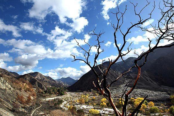 Big Tujunga Canyon