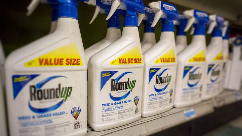 Roundup weed killer's main ingredient, glyphosate, has been used widely since 1974.