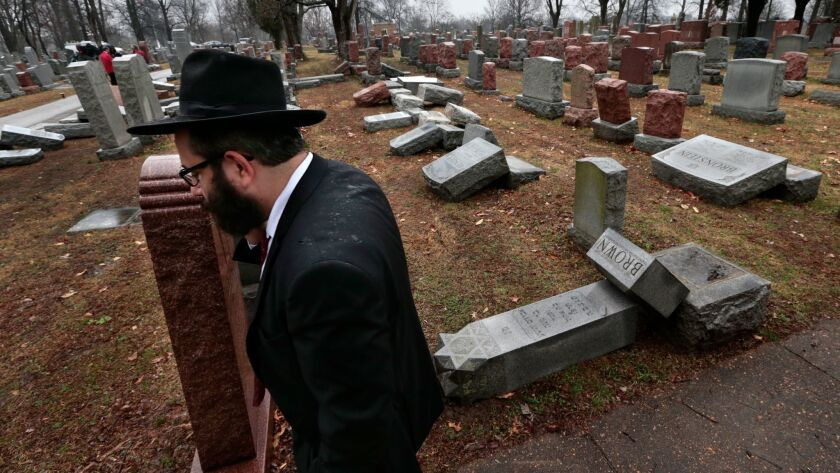 Rabbi Hershey Novack of the Chabad center walks through Chesed Shel Emeth Cemetery in University Cit