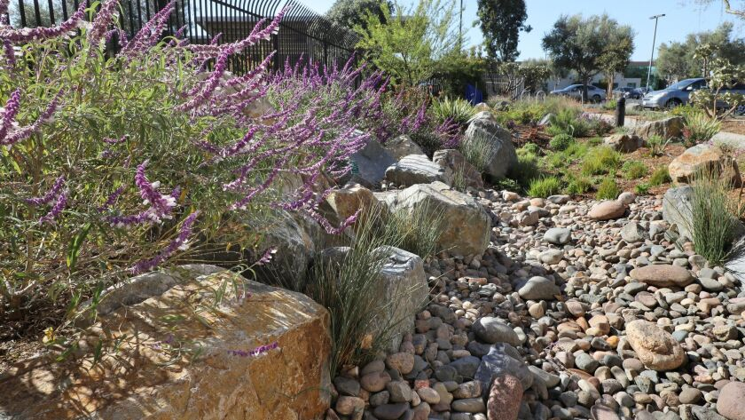 The new showcase garden in Kearny Mesa includes ideas for healthy soils, drought-tolerant plants, efficient irrigation and harvesting rainwater.
