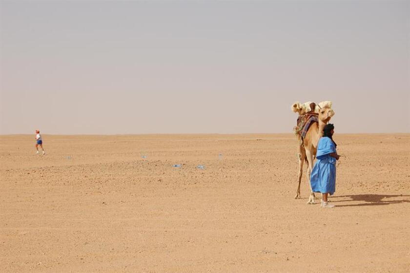 Un hombre junto a su camello en el desierto del Sahara. EFE/Archivo