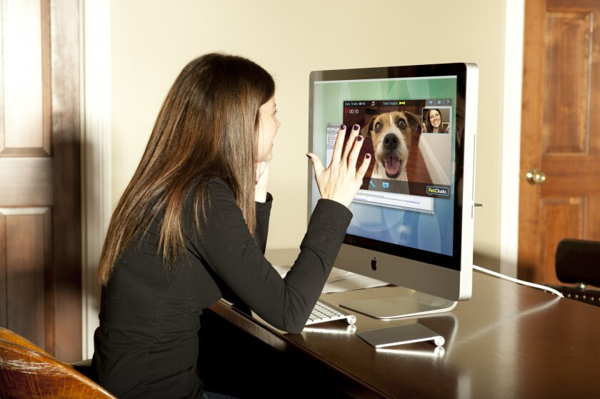 PetChatzHD with PawCall lets you have a video conference with your pet using a computer, smart phone or tablet.