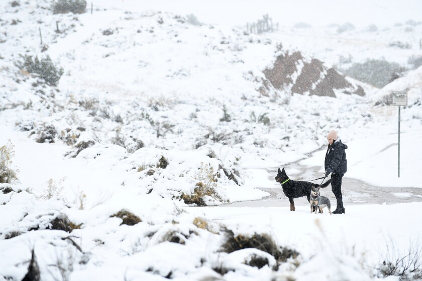 Katy DeGroot of Encino walks her dogs in the snow in Palmdale on Thursday.
