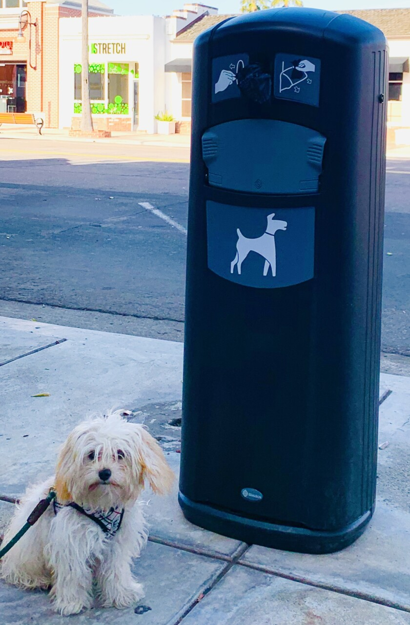 Emma visits a dog waste station in La Jolla.