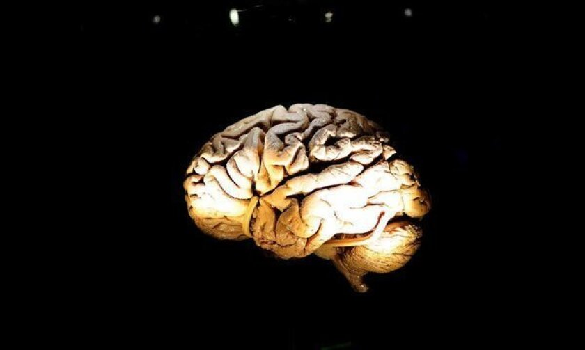 Even a single concussion can cause changes to the brain's structure with potential long-term consequences, says a new study.