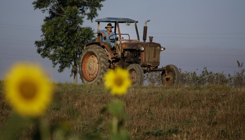 FILE - In this Feb. 22, 2011 file photo, a farmer drives his tractor in Pinar del Rio, Cuba. The Obama administration has approved the first U.S. factory in Cuba in more than half a century, allowing a pair of former software engineers to build a plant assembling as many as 1,000 small tractors a y