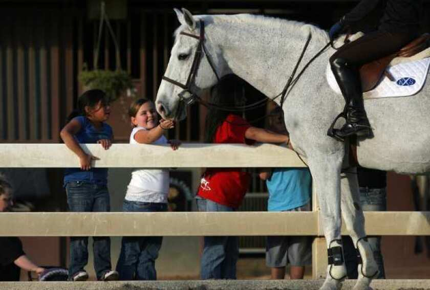 The total rent that the Orange County Fair & Event Center received in 2011 for use of the 7.5-acre Equestrian Center was $71,432.38. That's $793 per acre, per month ¿ about half what the fair could get per day for parking during the summer.