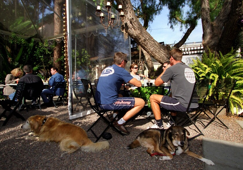 Patrons and dogs at restaurant