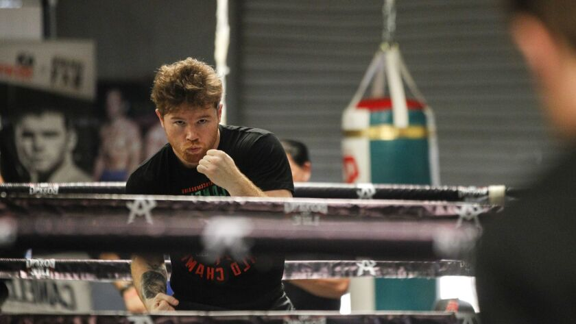 SAN DIEGO, August 3, 2018 | Boxer Canelo Alvarez is reflected in a mirror during his workout at his