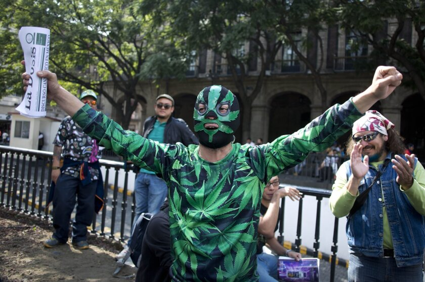 A supporter of marijuana legalization celebrates outside the Supreme Court after it ruled to legalize marijuana on Nov. 4.