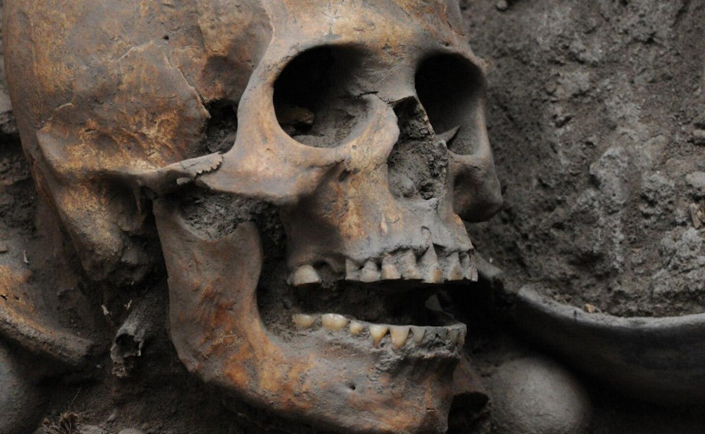 Los huesos fueron encontradps en terrenos de la Universidad Pontificia de México. Se trata del hallazgo más peculiar que investigadoras del Instituto Nacional de Antropología e Historia (INAH) han realizado desde que iniciaran los trabajos de salvamento arqueológico en el citado lugar.
