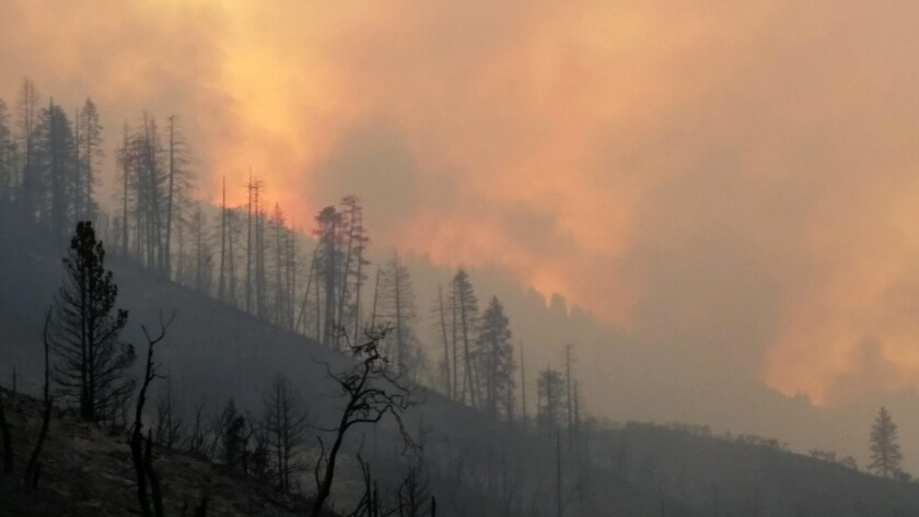 The Rough fire is the largest active fire in California, the majority of which is burning the the Sierra National Forest and Sequoia National Forest.