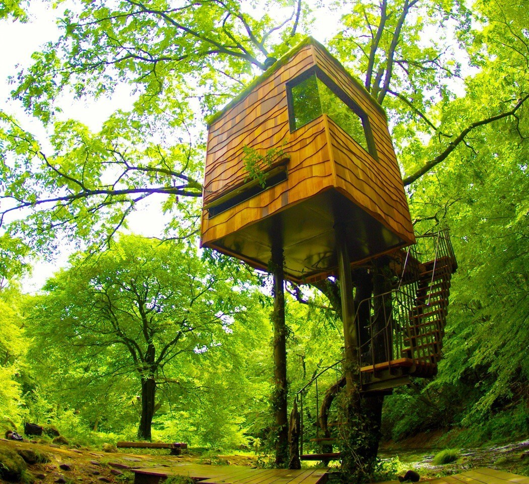 Takashi Kobayashi built this tree-house tea house worthy of Dwell magazine at the Niki Club in Nasu, Japan.