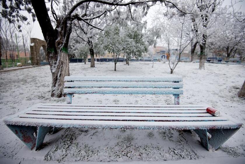 Vista de una banca de un parque con hielo acumulado debido a las bajas temperaturas en Saltillo, Coahuila (México) este 17 de enero de 2018. EFE