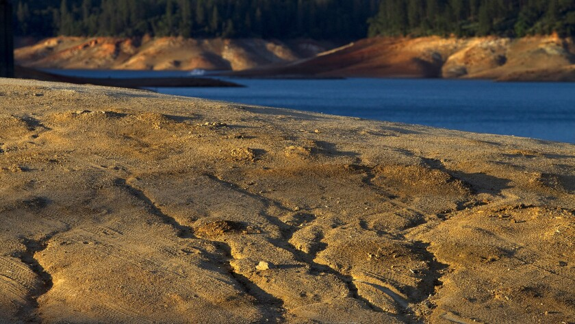 Dry ruts in a island reveal where the water level used to be at Lake Shasta due to serious drought conditions. Lake Shasta is at 31% of capacity due to the ongoing drought and is likely to get worse.
