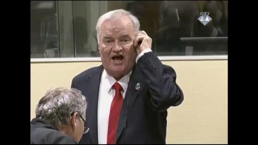 Ratko Mladic sentenced to life in prison for genocide, The Hague, Netherlands - 22 Nov 2017