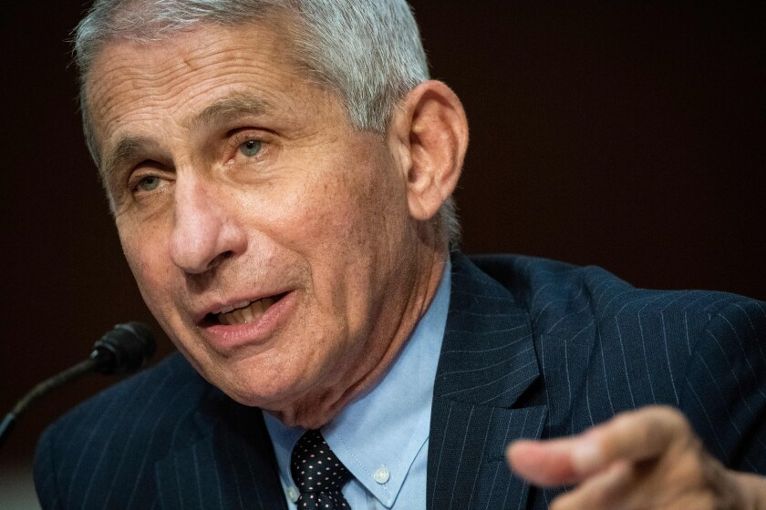 Anthony Fauci, director of the National Institute of Allergy and Infectious Diseases