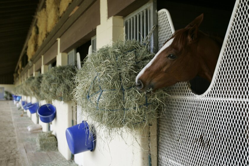 Rancho Paseana is a 200-plus acre training facility for race horses. It's set to close by May 31.