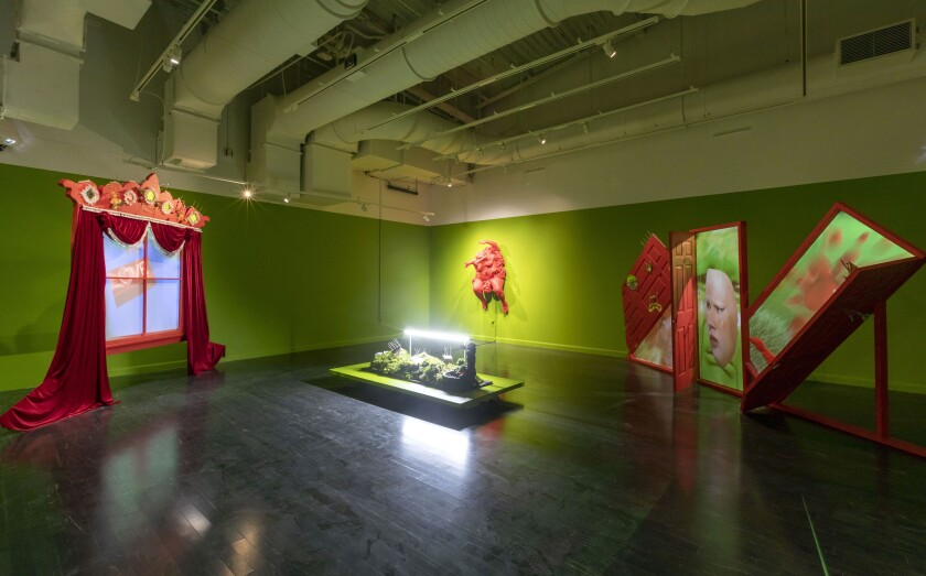 "An installation view of Gabriela Ruiz's solo show ""Full of Tears"" at VPAM."