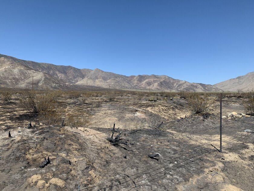 The Southern Fire, which scorched nearly 5,200 acres in Anza-Borrego Desert State Park, was 55 percent contained Monday.