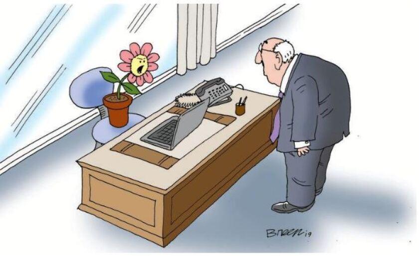 plant boss.JPG