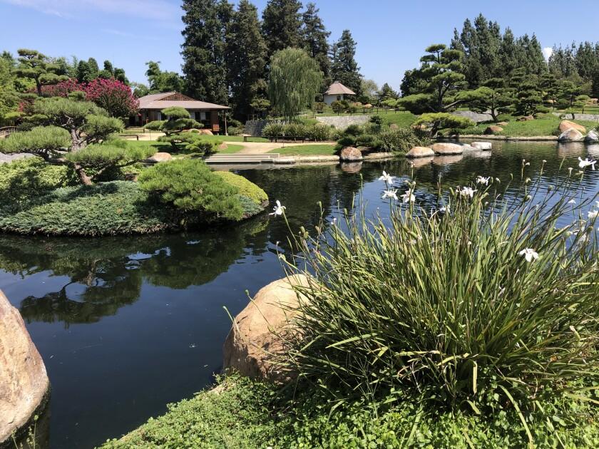 The  Japanese Garden in Van Nuys