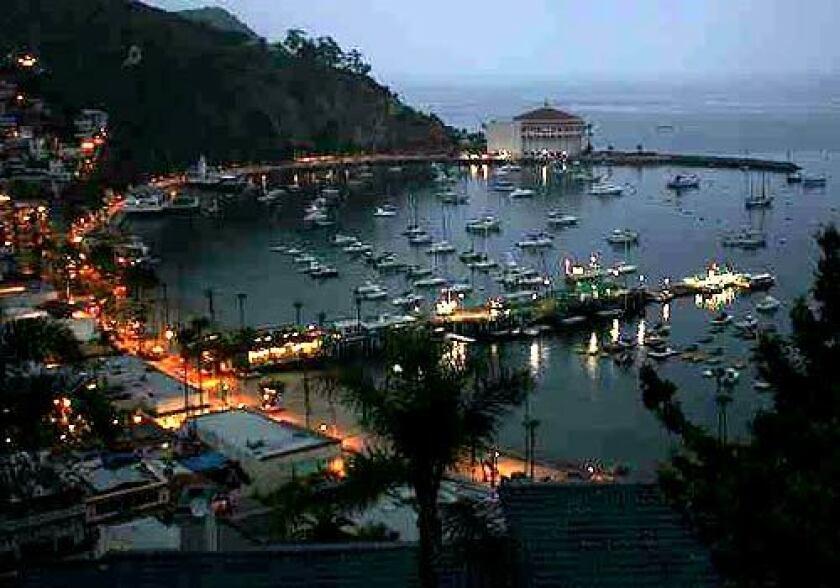 Harbor lights at dawn in Avalon.