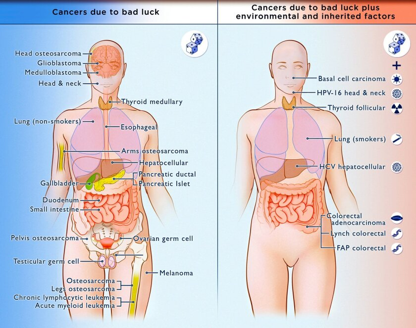 Cancers due to bad luck, left, and cancers due to a combination of bad luck, environmental factors, and inherited factors.