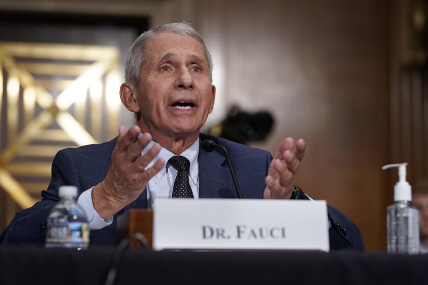 El doctor Anthony Fauci, el principal experto en enfermedades infecciosas de Estados Unidos
