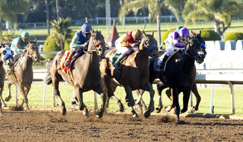 On Horse Racing: If Donworth wins Big 'Cap, his team will feel like a million