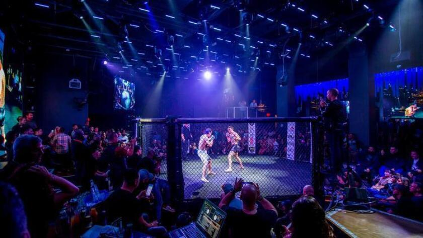 Fight Night at Parq Nightclub features the top competitors in MMA fighting (Bradley Schweit)