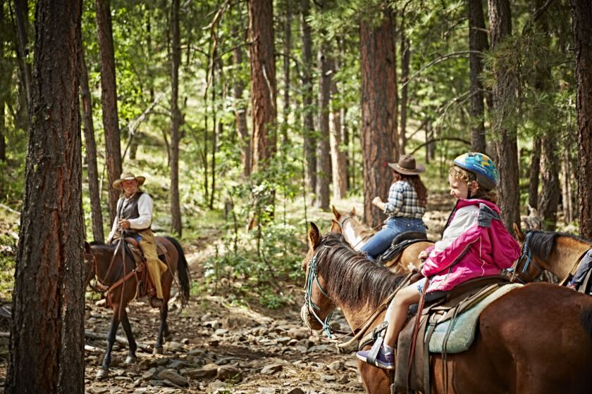 Mormon Lake Lodge in Northern Arizona has discounted getaway packages that include trail rides.