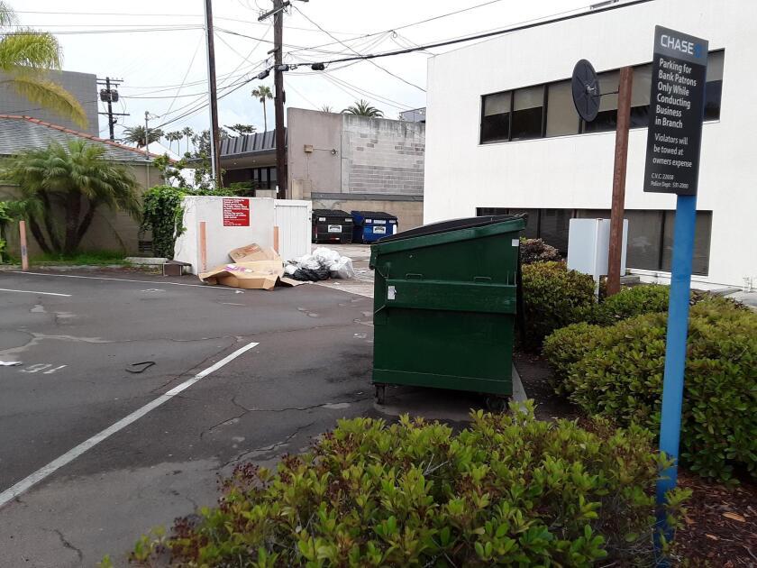 dumpster-mess-alternative-view-20190522