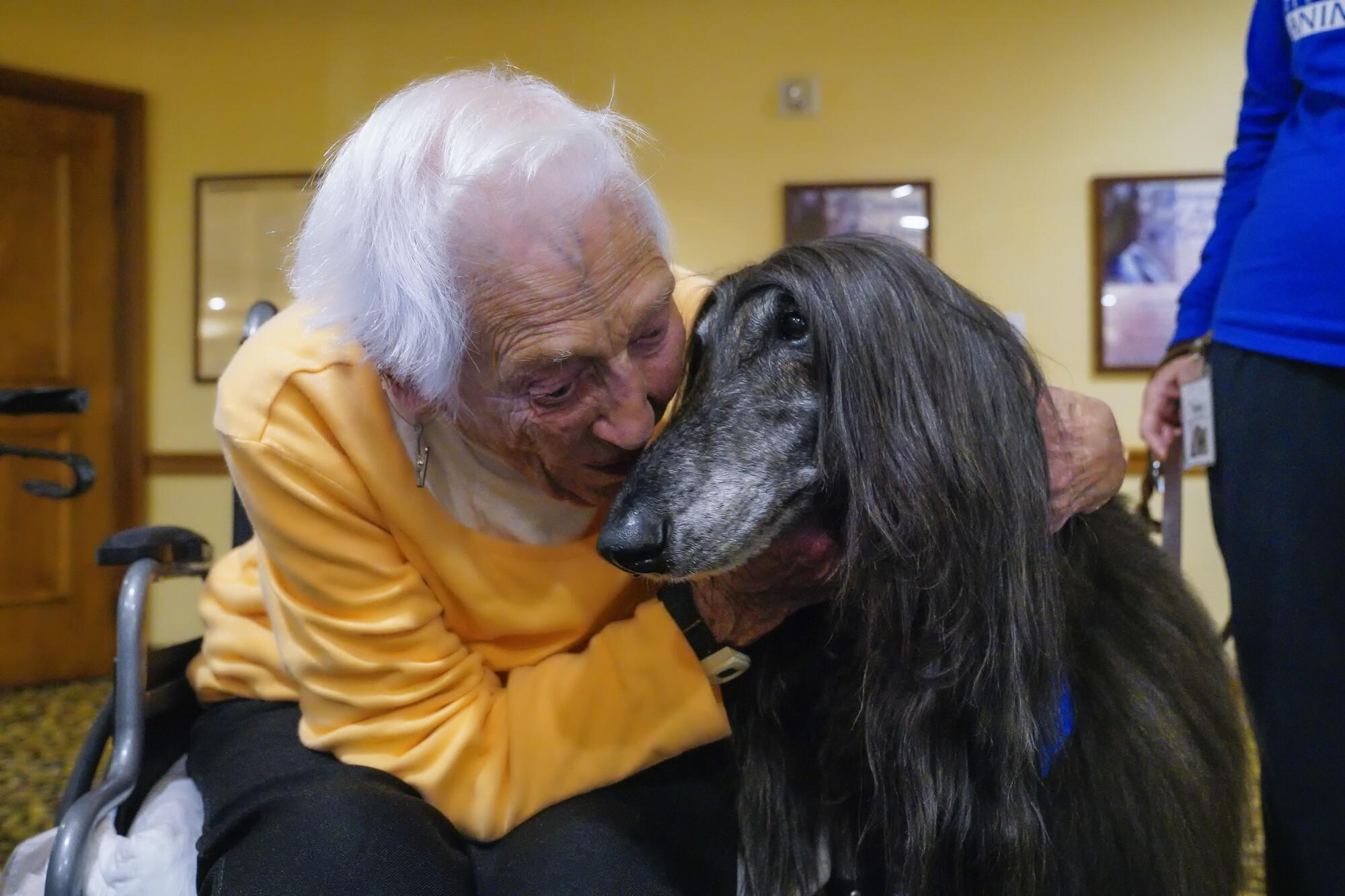 Rejane Mason and an Afghan dog