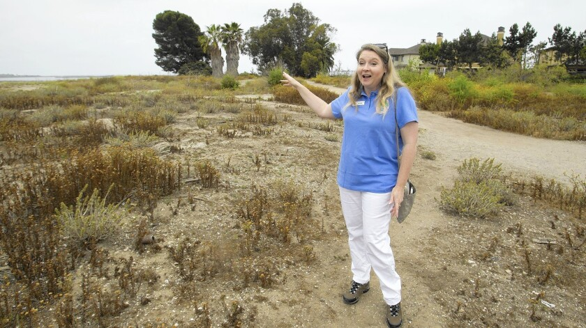 Kim Kolpin, Bolsa Chica Land Trust executive director, speaks as she stands on Ridge property in Huntington Beach, near Bolsa Chica Street and Los Patos Avenue, on Wednesday. The trust agreed to drop its lawsuit challenging development of the property and is working to buy it.