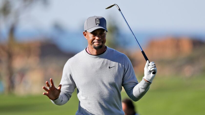 FILE - In this Jan. 27, 2017, file photo, Tiger Woods reacts after hitting out of the rough on the n