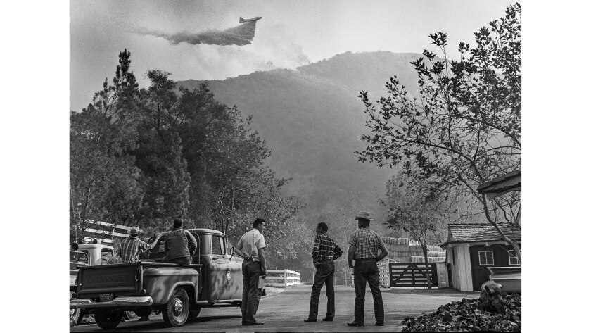 Nov. 7, 1961: Spectators watch aircraft dropping borate on hill near Mandeville Canyon ranch owned b